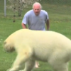 Guy with a pet polar bear